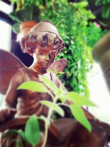 wpid-pomelo_20150829162925_save.jpg